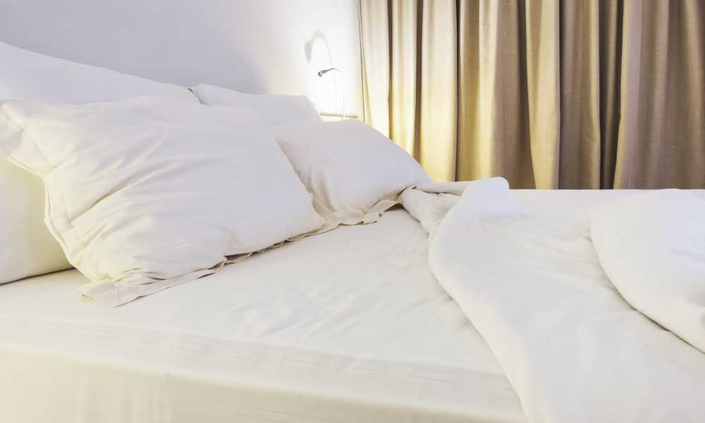 Does a Mattress Protector Prevent Bed Bugs